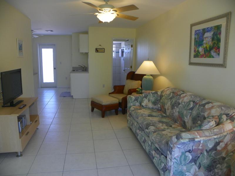 Living Room/Flat Screen TV/Queen Sleeper Sofa - Walk to Nokomis Beach - Nokomis - rentals