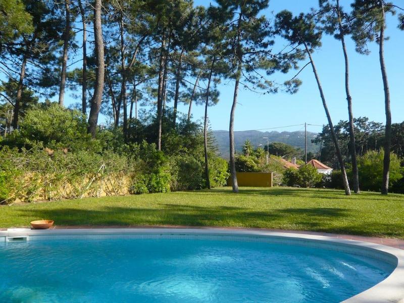 Apple Beach Villa - Image 1 - Colares - rentals