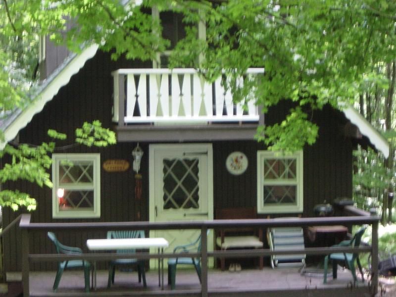Remodeled 3BR/1BA Mountain Top, Lake House Chalet - Image 1 - Parksville - rentals