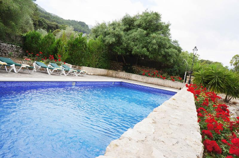 Pool and solarium area - Magnificent country home - Pollenca - rentals
