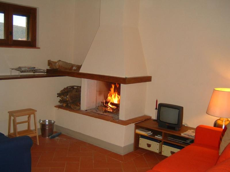 Apartment  Il ponticello Cortona - Image 1 - Cortona - rentals