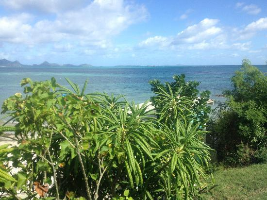 View from the cottage - Vero's Cottage - Carriacou - rentals