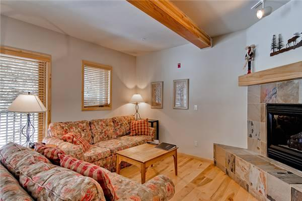 Twin Elk Lodge #A1 - Image 1 - Breckenridge - rentals