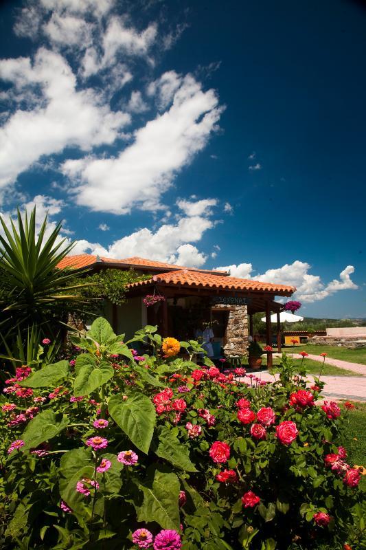 VIlla Hacienta ,Ammouliani Island - Image 1 - Ammouliani - rentals