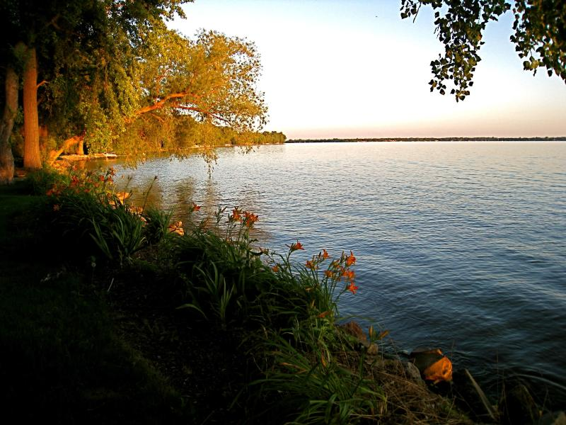 Enjoy sitting on one of the benches or Adirondack chairs and taking in all the beauty of the lake - Lakefront Luxury - 4 acres of privacy close to Air - Oshkosh - rentals
