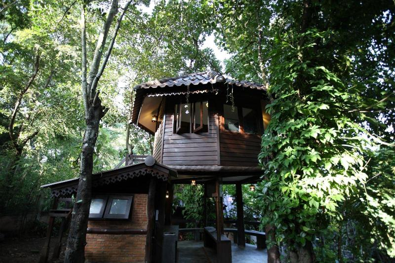 Tree House Nature stay close to city center - Image 1 - Chiang Mai - rentals