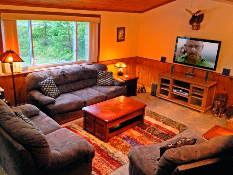 Welcome to our Killington retreat! Relax in the living room. Watch a movie or start a fire. - The Killington Mountain Retreat: Great Summer Spot - Killington - rentals