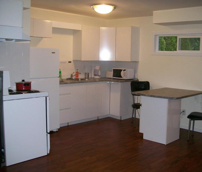 Affordable Studio in Maple Ridge, BC - Image 1 - Sebring - rentals