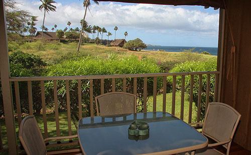 View from lanai - Paniolo Hale I2 - Maunaloa - rentals
