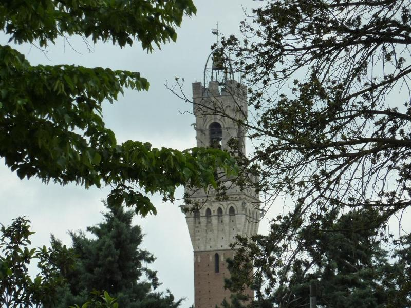 the view from the near piazza - Bright and Cozy Apartment in Siena Center - Siena - rentals