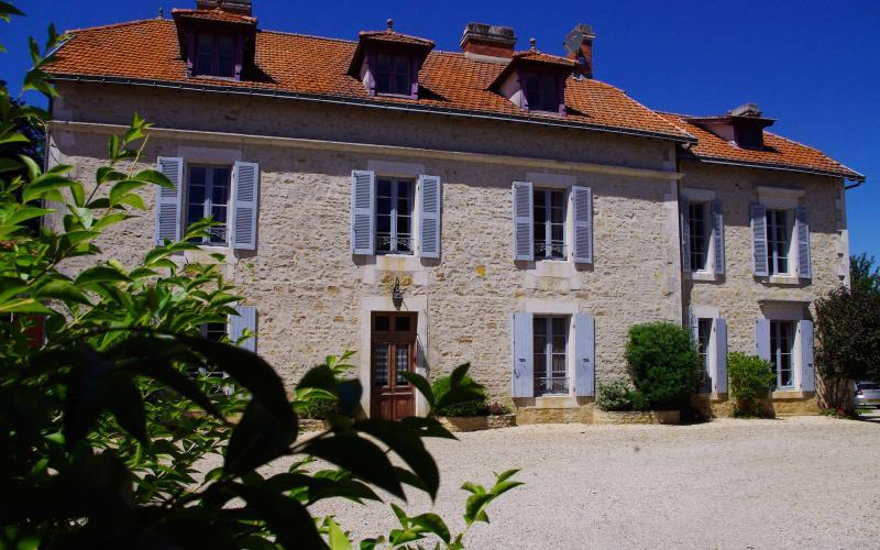 Manoir du Moulin - Image 1 - Sainte-Hermine - rentals