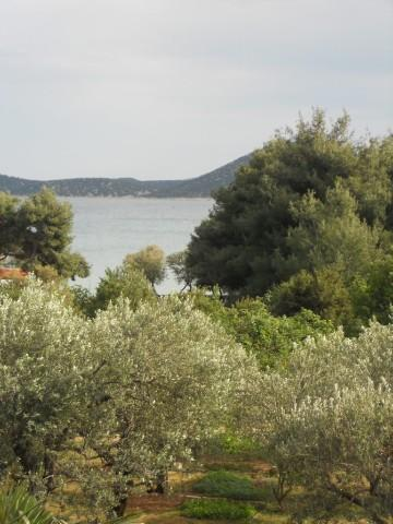 Apartments and Rooms Josipa - 10711-A1 - Image 1 - Vodice - rentals