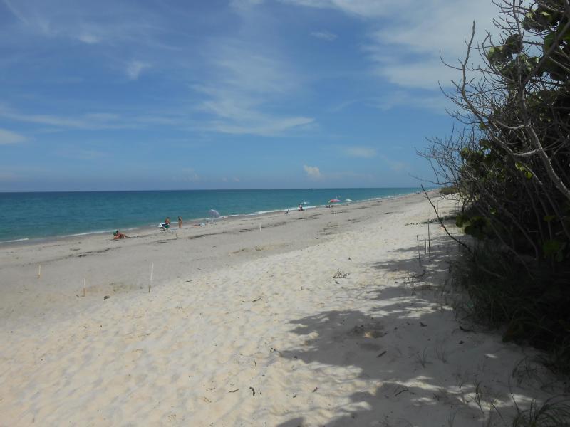 Seaside - Image 1 - Jupiter - rentals