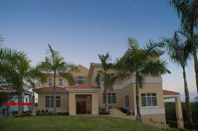 Castle Garden - Image 1 - Humacao - rentals