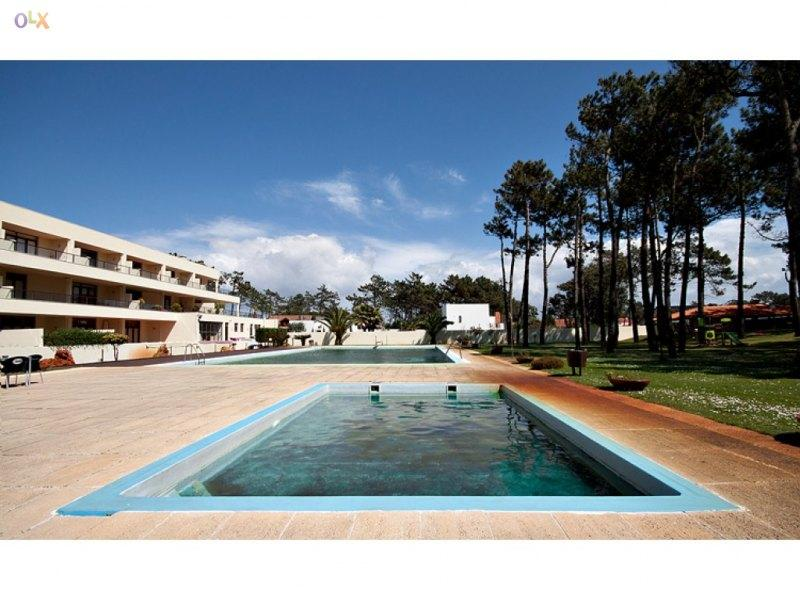 Swimming pools - Beach apartment in Esmoriz, near Porto, Portugal - Esmoriz - rentals