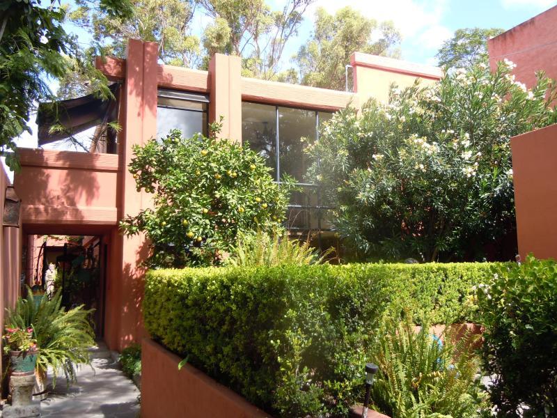 front of Casa Perejil - Sunny artist home in San Miguel de Allende - Arlington - rentals