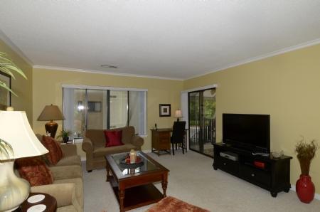 Spacious Open Living Room - 71 Springwood Villas - Hilton Head - rentals