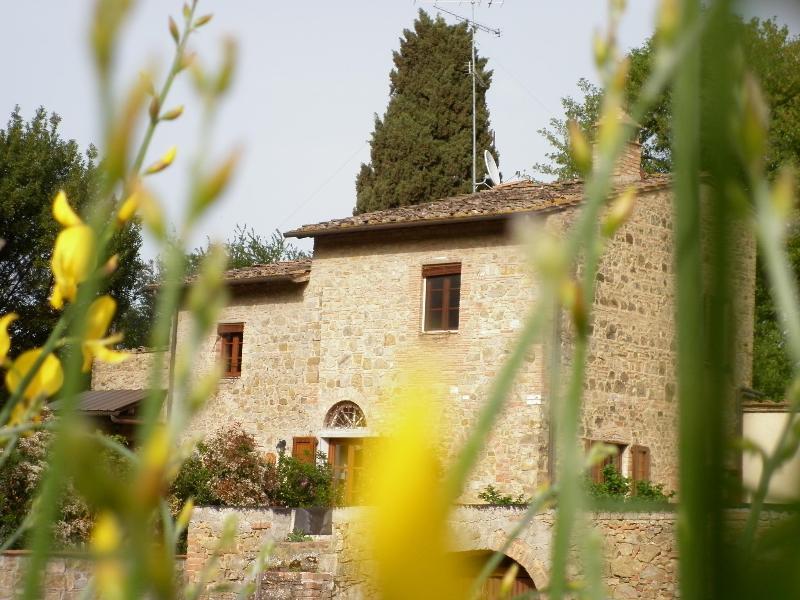 Podere La Grande Querce near s.gimignano - Image 1 - Montaione - rentals