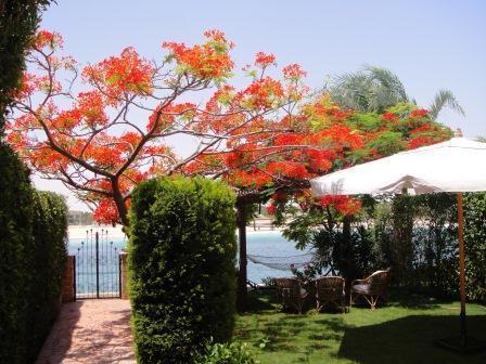 Villa Marina Egypt 1 - Villa Marina Egypt, North Coast, Area 24 Gate 5 - El Alamein - rentals