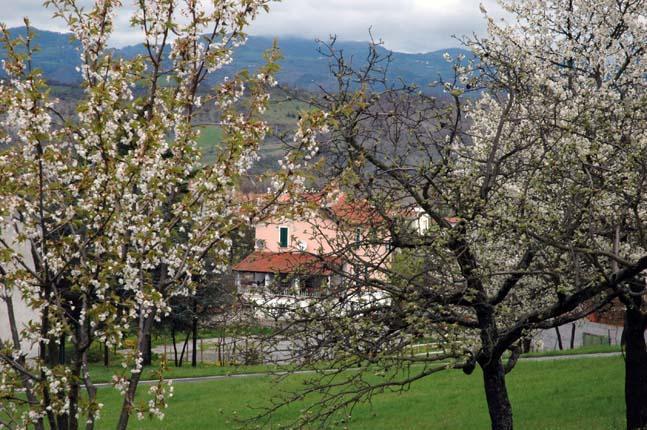 View - Agriturismo La Celestina - Piana Crixia - rentals