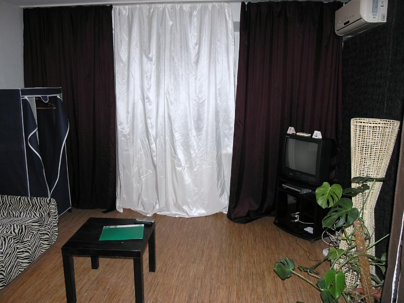 Zebra one room apartment on Khreschatik - Image 1 - Kiev - rentals