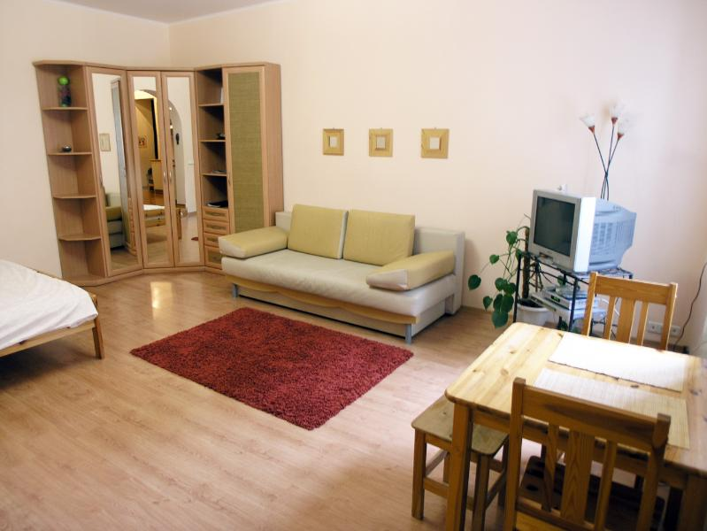 ECO-studio on central Independence sq. - Image 1 - Kiev - rentals