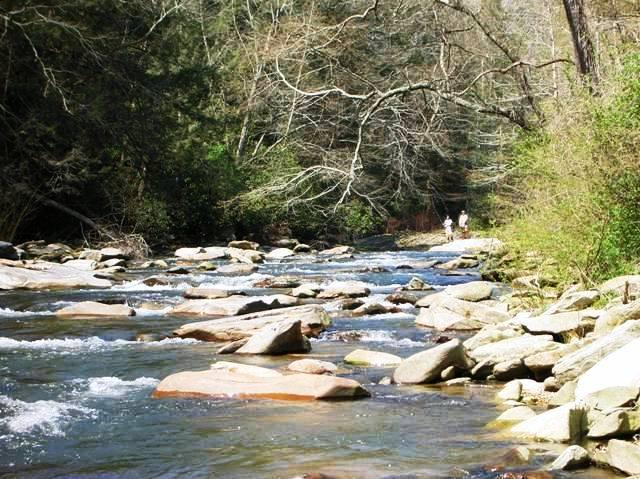 Fish in River Right Behind Cottage - Cottage On River With Huge Backyard & Fire Pit - Bat Cave - rentals