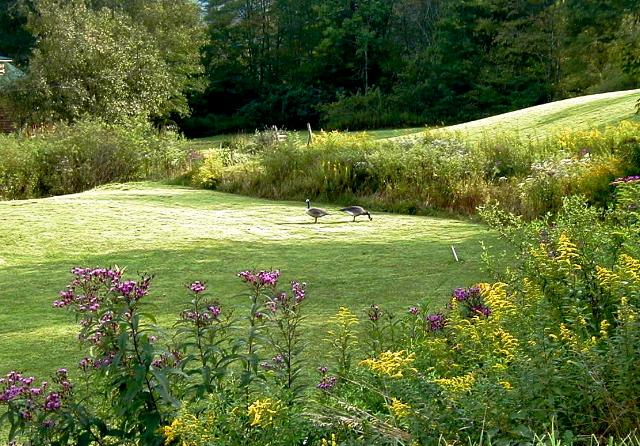 Spacious Grounds - Cedar Duplex w/ Hot Tub, Creek, Lake Glenville NC - Cashiers - rentals