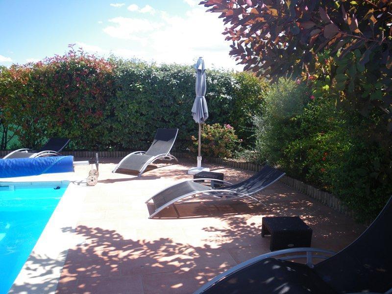 Espace piscine (5 x 11,5) - Gite Douillet Dans Le Gard, Entre Cevennes Et Camargue - Saint-Hippolyte-du-Fort - rentals