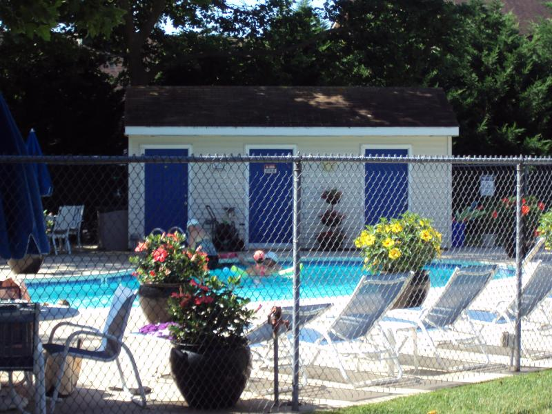 The Pool...yep..it's THIS Nice!!!!! - Pet Friendly Rehoboth Condo w/ Pool..Walk 2 Beach - Rehoboth Beach - rentals