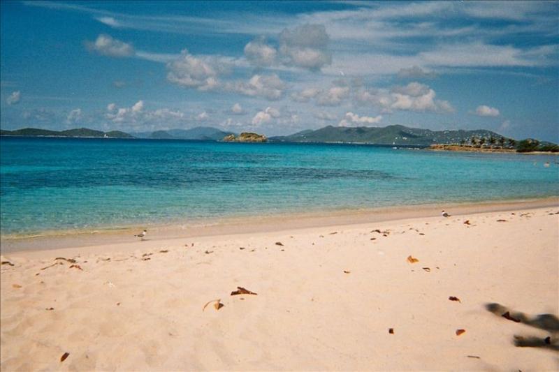 With St John in view, the NY Times calls Sapphire Beach the best on St Thomas - Beautiful Sapphire Beach - St Thomas' Best - Saint Thomas - rentals