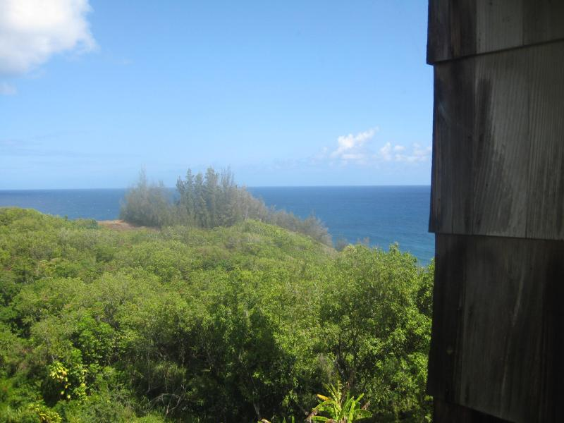 From Master Bedroom - SeaLodge A3 Two Bedroom - Princeville - rentals