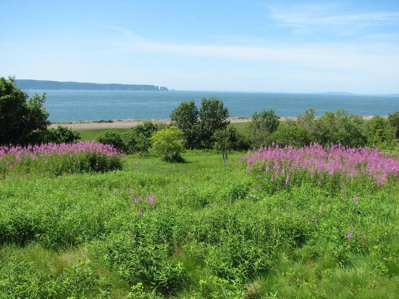 View to Cape Split - Oceanfront 2-bedroom Chalet at the Bay of Fundy - Parrsboro - rentals
