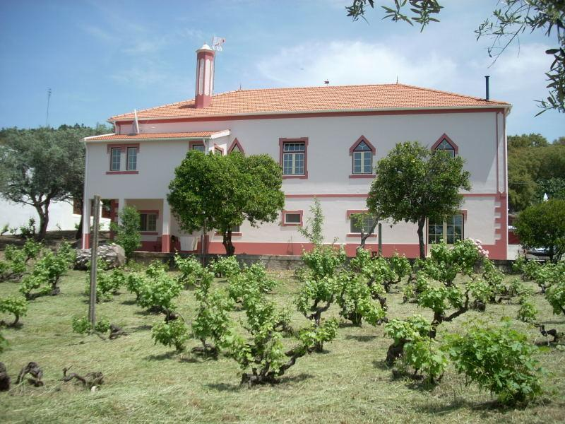 Quinta da Vila Maria and part of the vineyard - Country house B&B w/vineyard, Serra de São Mamede - Portalegre - rentals
