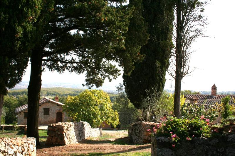 Vista from the Parking - The Grainery (Agriturismo Il Caggio, Siena) - Siena - rentals