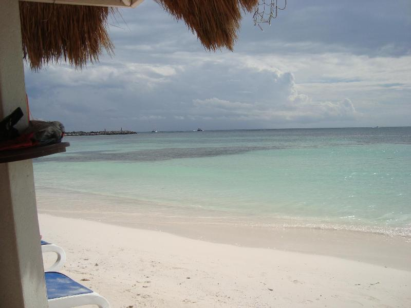 Omni Beach Club Ocean Front - COMFY MAYAN RIVIERA CONDO at PUERTO AVENTURAS - Puerto Aventuras - rentals