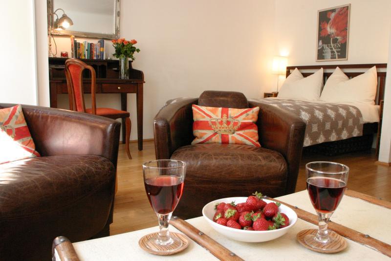 (5) Comfortable Studio in great central location - Image 1 - Salzburg - rentals