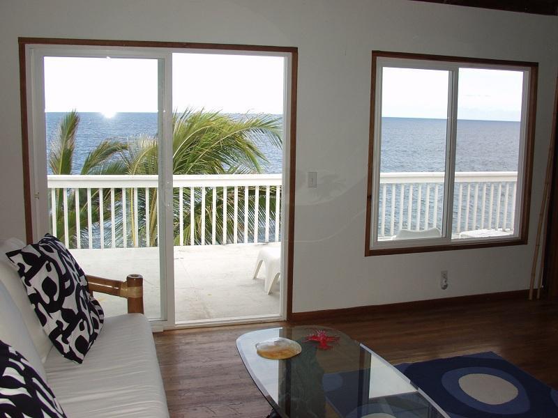 Oceanfront 1bd in tropical area - Image 1 - Pahoa - rentals