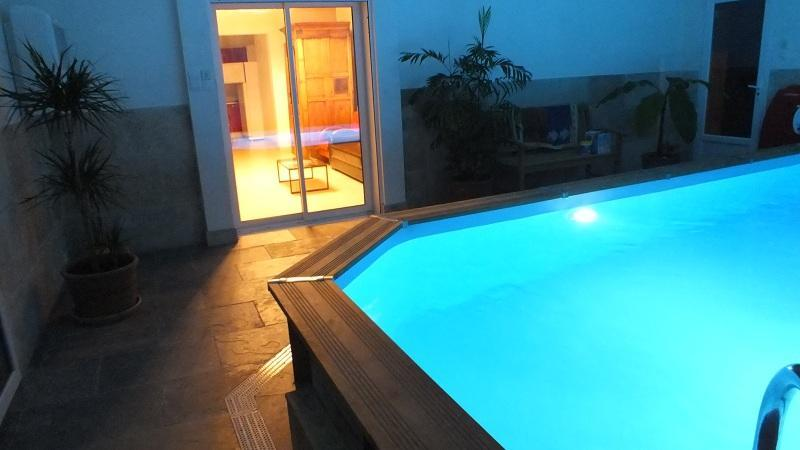 piscine interieure - La Petite Maison sous les Pins- Pet-Friendly 2 Bedroom House with a Pool - Aix-en-Provence - rentals