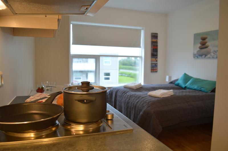 The apartment, seen from the kitchen. - Hvolsvöllur - Well located apartment - Hvolsvollur - rentals