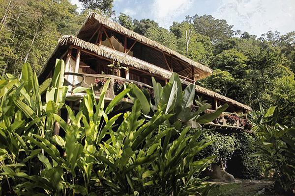 Casa Vida Verde - Image 1 - Cabo Matapalo - rentals