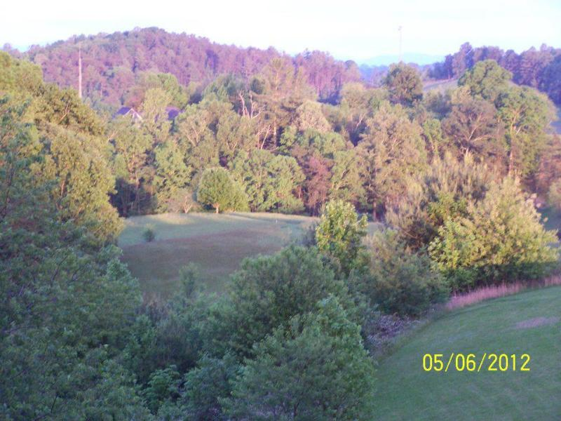 Brittany's Mountain Retreat~ View from Back Deck - ~Brittany's Mountain Retreat~ near Asheville, NC - Leicester - rentals