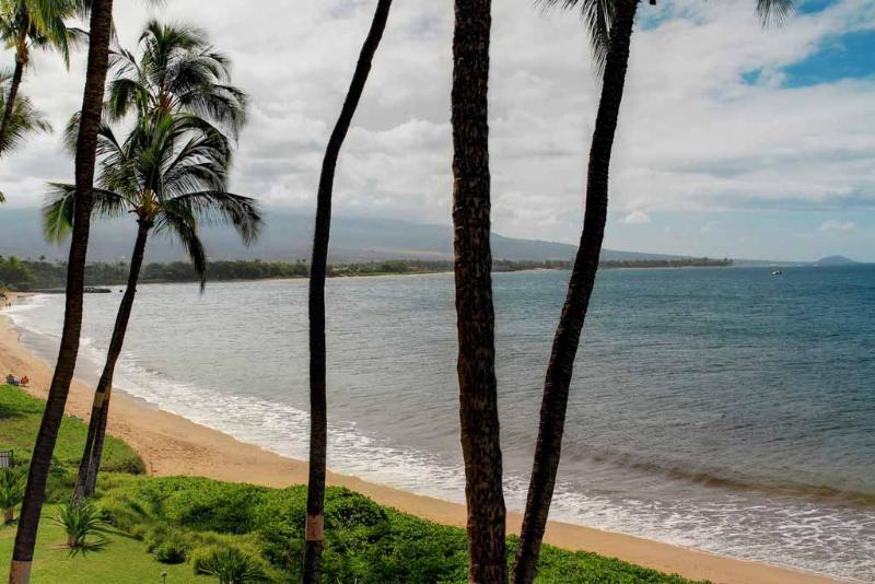 SUGAR BEACH RESORT, #328 - Image 1 - Kihei - rentals