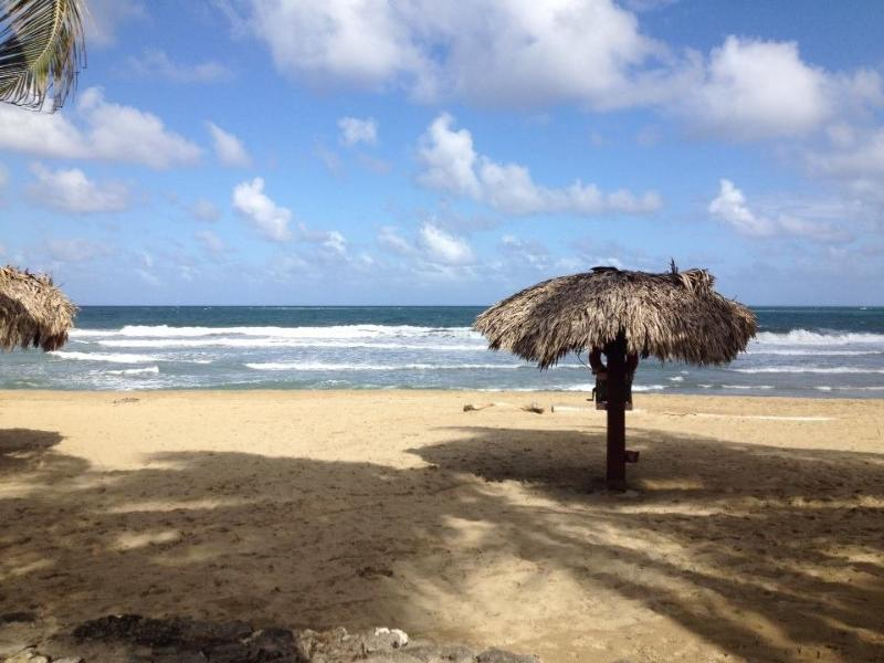 Beach - Cabarete Ocean Front Ground Floor - Cabarete - rentals