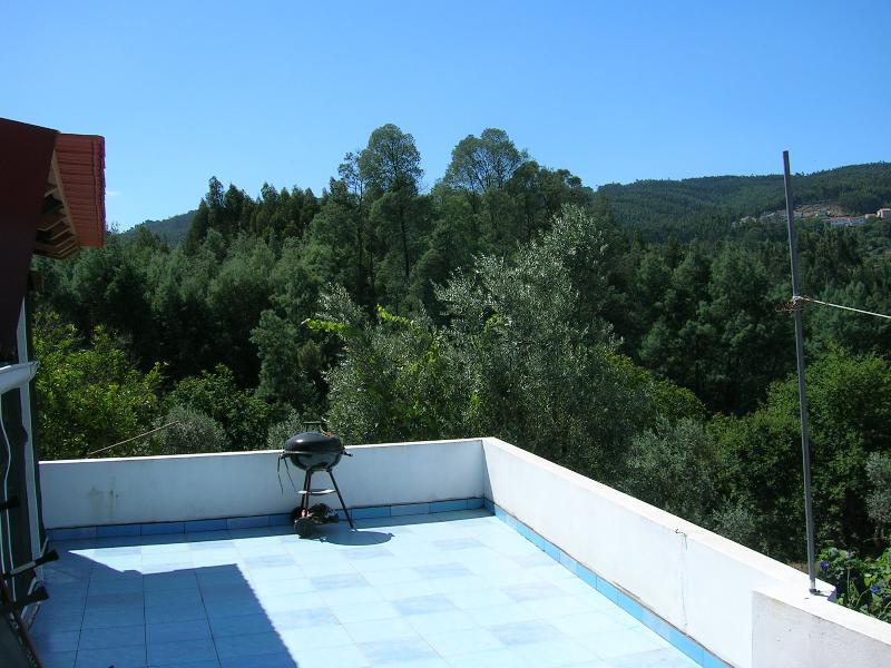 Shared Sundeck - Portugal's Finest Forest Retreat  Relax & Enjoy ! - Penacova - rentals