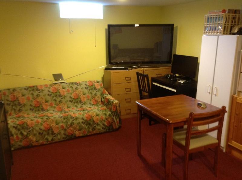 View of room - Beautiful Basement suite - Windsor - rentals