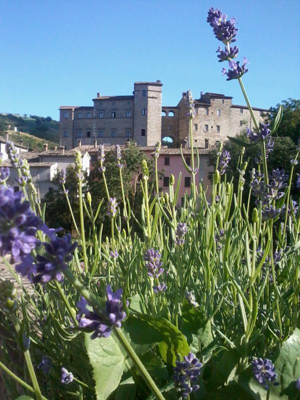 the Castle - The castle of belforte All' isauro Accomodation in Historical Rooms and apartments in marche near urbino - Belforte all'Isauro - rentals