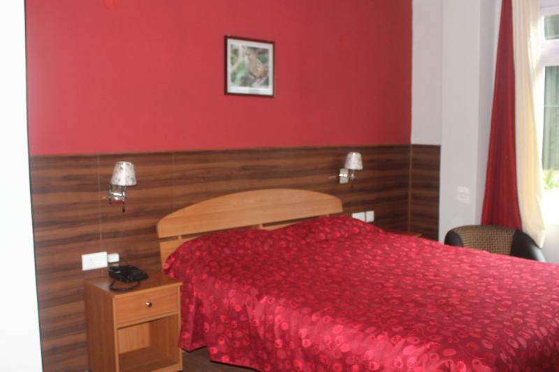 DBL LX ROOM - Shumbuk Homes 3 Bedroom Luxury Suite, Gangtok - Gangtok - rentals