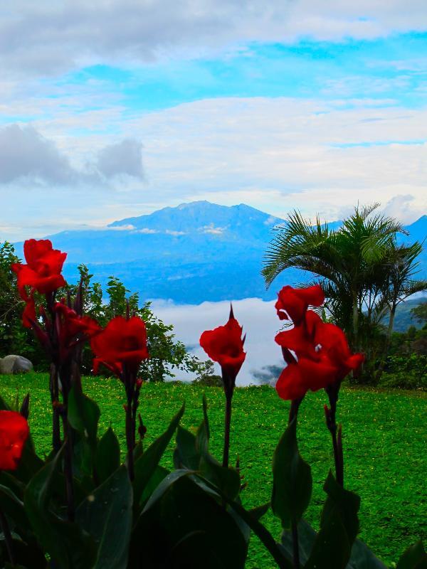 View of Volcan Baru - Refugio La Brisa del Diablo (Bedroom #1) - Boquete - rentals