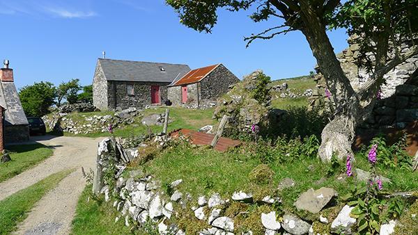 Holiday Cottage - Pen y Mynydd, Dinas - Image 1 - Pembrokeshire - rentals